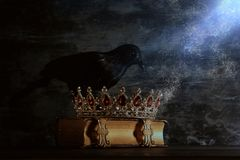 Low key image of beautiful queen/king crown and black crow. fantasy medieval period. Selective focus. Low key image of beautiful queen/king crown and black crow royalty free stock images
