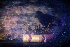 Low key image of beautiful queen/king crown and black crow. fantasy medieval period. Selective focus. Low key image of beautiful queen/king crown and black crow royalty free stock photography