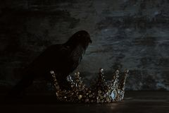Low key image of beautiful queen/king crown and black crow. fantasy medieval period. Selective focus. Low key image of beautiful queen/king crown and black crow royalty free stock photo