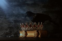 low key image of beautiful queen/king crown and black crow. fantasy medieval period. Selective focus. stock photos