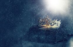 Free Low Key Image Of Beautiful Queen Or King Crown Over Gold Treasure Chest. Vintage Filtered. Fantasy Medieval Period Stock Image - 215070521