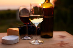 Low key image, two glasses of wine Royalty Free Stock Photo
