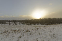 Low key photo of Beautiful sunrise snowfall landscape. In november snow covered ground Stock Photography