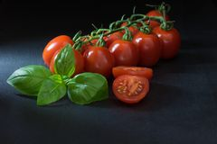 Low key shot of shrubs tomatoes, sliced tomato and basil Stock Images