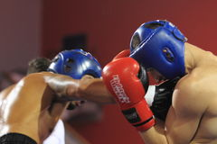 Low kick kickboxing Stock Photography