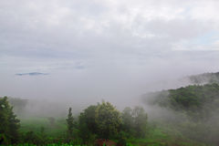 Low level cloud at Nam Prao valley Stock Image