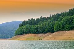 Low level of water lake. Low level of water on Bicaz Lake, summer forest on coast royalty free stock photo