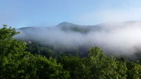 Low lying clouds and tree tops. Stunning view of Mount tremblant in the national park Stock Image