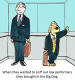 Low performers. When they wanted to sniff out low performers they brought in the Big Dog Royalty Free Stock Photography