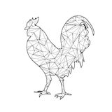 Low Poly adult Coloring page Rooster. Isolated Royalty Free Stock Photo
