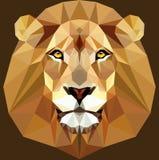 Low Poly Animal Face Lion Stock Photos