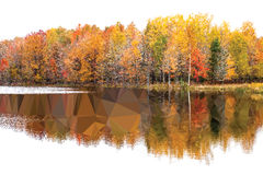 Low-poly Autumn Background Royalty Free Stock Images
