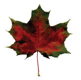 Low Poly Autumn Maple Leaf Stock Images
