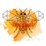 Low poly bee on orange watercolor Stock Image