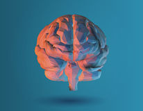 Low poly 3D brain illustration on blue background. Low poly 3D brain illustration for graphic design on blue background Royalty Free Stock Image