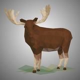 Low poly elk. Stock Image