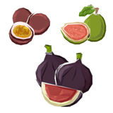 Low poly figs, guava and maracuja fruits Royalty Free Stock Image