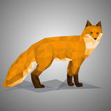 Low poly fox. Vector illustration in polygonal style. Beautiful forest animal on gray background Royalty Free Stock Photography