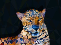 Low poly geometric of leopard. Triangular shape mosaic on dark background Royalty Free Stock Photos