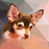 Low poly geometric portrait of chihuahu dog Stock Photography