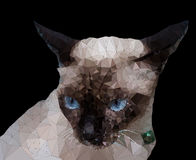 Low poly geometric of Siamese cat Royalty Free Stock Photos