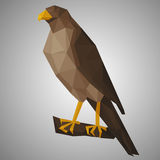 Low poly hawk. Stock Photo