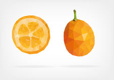 Low Poly Kumquat fruit. Vector illustration of Kumquat fruit in low poly design Royalty Free Stock Images