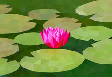 Low poly lily on the pond. Low poly vector lily on the pond Stock Images