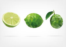 Low Poly Lime fruit. Vector illustration of Lime fruit in low poly design Royalty Free Stock Photography