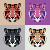 Low poly lined tigers set. Geometric art Stock Photo