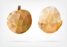 Low Poly Longan fruit. Vector illustration of Longan fruit in low poly design Royalty Free Stock Photography