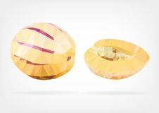 Low Poly Pepino Melon fruit. Vector illustration of a Pepino melon in low poly design Stock Image