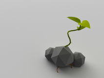 Low poly plant Stock Photos