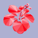 The Low poly polygon red flower isolated,  design. Royalty Free Stock Photos