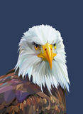 Low poly poster with eagle. Vector illustration. Royalty Free Stock Image
