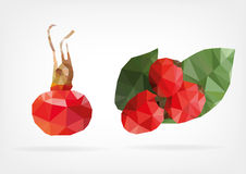 Low Poly Rosehip fruit. Vector illustration of Rosehip fruit in low poly design Stock Photography