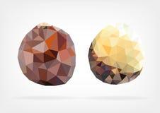 Low Poly Salak fruit. Vector illustration of Salak fruit in low poly design Stock Photos