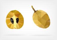 Low Poly Sapodilla fruit. Vector illustration of Sapodilla fruit in low poly design Stock Photo