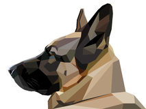 Low poly shepherd snout. Vector low poly style shepherd snout realistic vector illustration