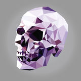 Low poly skull Royalty Free Stock Photos