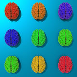 Low poly stylized brains illustration Royalty Free Stock Image
