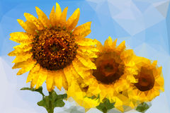 Low poly of  sunflower Stock Image