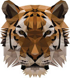 Low Poly Tiger Stock Image