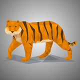 Low poly tiger. Vector illustration in polygonal style. Beautiful animal on gray background Royalty Free Stock Photo