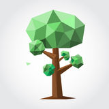 Low poly tree with green leaf and brown trunk. On white backdrop. Vector illustration Stock Photography
