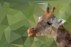 Low poly, triangular, giraffe head on green polygonal background Royalty Free Stock Image