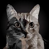 Low poly Vector Portrait of a cool Cat royalty free illustration