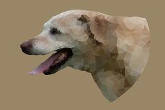 Low poly vector portrait of dog. Royalty Free Stock Photo