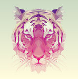 Low Poly Vector Tiger Illustration Royalty Free Stock Photography