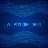 Low poly vein or wire wireframe mesh background. Stock Image